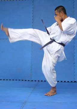Shotokan karate belts requirements